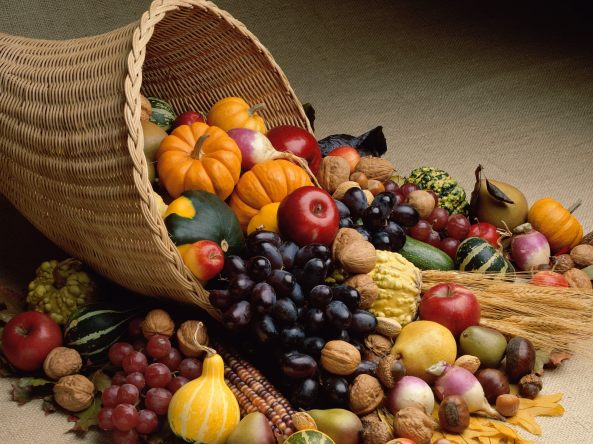 BG-Fruits-Fall-Harvest-Wallpaper-HD-Background